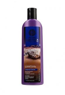 Шампунь Natura Siberica Северное сияние Максимальное очищение и свежесть волос, 280 мл