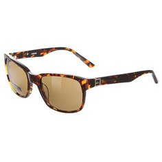 Очки Quiksilver Carpark Tortoise/Brown