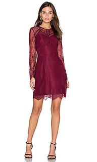 Кружевное платье shirley - Greylin