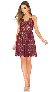 Кружевное платье с юбкой-солнцеклеш - J.O.A.