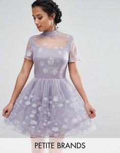 Короткое приталенное платье для выпускного из сетки с цветочной вышивкой Chi Chi London Petite - Фиолетовый