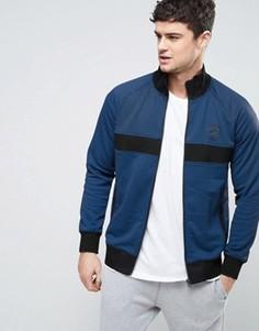 Синяя спортивная куртка в мелкий горошек Converse 10003392-A01 - Черный