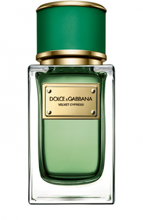 Парфюмерная вода Velvet Cypress Dolce & Gabbana