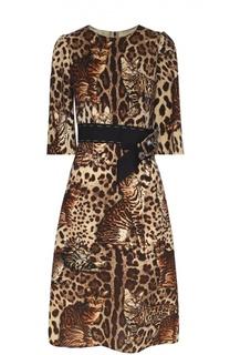 Приталенное платье с коротким рукавом и звериным принтом Dolce & Gabbana