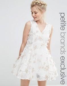 Приталенное платье с цветочной аппликацией True Decadence Petite - Кремовый