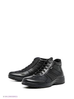 Категория: Высокие ботинки Ralf Ringer