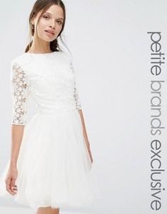 Платье с кружевным топом и рукавами 3/4 Chi Chi London Petite - Кремовый