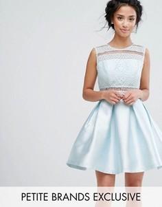 Короткое приталенное платье с кружевом и пуговицами на спине Chi Chi Petite - Синий