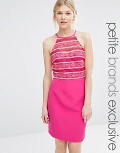 Облегающее платье с высокой горловиной и кружевом Paper Dolls Petite - Розовый