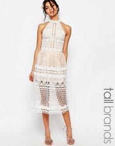 Кружевное приталенное платье миди с высокой горловиной Jarlo Tall - Белый