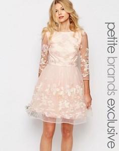 Платье мини для выпускного с вышитыми цветами и рукавами в сеточку Chi-Chi London Petite Premium - Кремовый