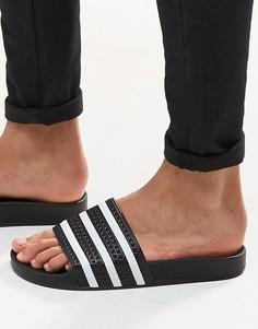 Черные шлепанцы adidas Originals Adilette 280647 - Черный