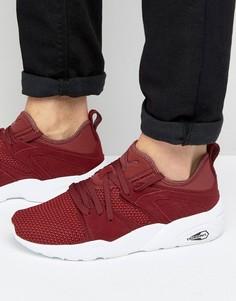 Мягкие красные кроссовки Puma Blaze Of Glory 36412802 - Красный