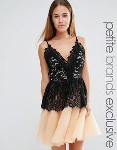 Платье для выпускного с кружевным лифом и юбкой из тюля True Decadence Petite - Черный