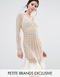 Сетчатое платье мини с кисточками и декоративной отделкой Maya Petite - Розовый