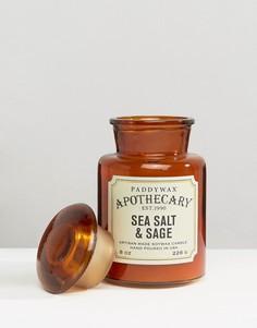 Свеча 8 унций Paddywax Apothecary - Морская соль и шалфей - Коричневый