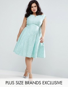 Жаккардовое платье Coast Plus Kimberley - Зеленый