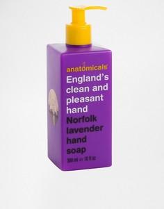 Мыло для рук с ароматом норфолкской лаванды Anatomicals Englands Clean And Pleasant Hand - 300 мл - Бесцветный