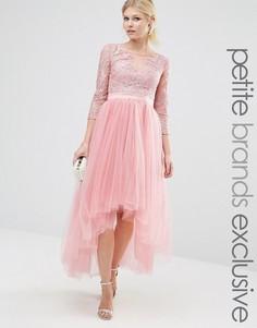 Платье миди для выпускного с тюлевой юбкой и кружевом металлик Chi Chi London Petite - Розовый