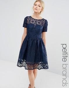 Кружевное платье с вырезной отделкой и короткими рукавами Chi Chi London Petite - Темно-синий