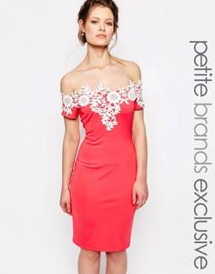 Платье-футляр без рукавов с контрастной кружевной отделкой Paper Dolls Petite - Красный