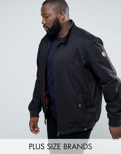 Черная куртка Харрингтон Duke PLUS - Черный