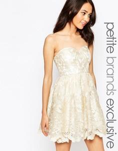 Кружевное платье‑бандо для выпускного с вышивкой Chi Chi London Petite - Кремовый