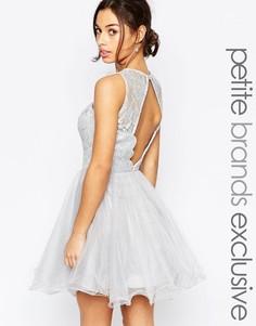 Кружевное платье для выпускного с фигурной отделкой на открытой спинке Chi Chi London Petite - Серый