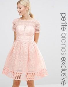 Приталенное платье мини с вышивкой Chi Chi London Petite - Кремовый