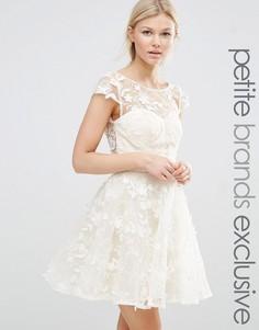 Короткое приталенное платье с 3D‑аппликацией Chi Chi London Petite - Кремовый