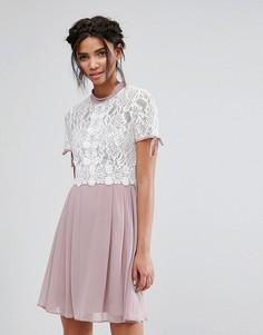 Короткое приталенное платье с кружевным лифом Elise Ryan - Мульти