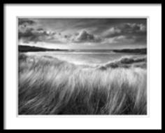 """Постер """"Sea Grass"""" M Style"""