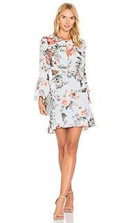 Floral frill dress - Bardot