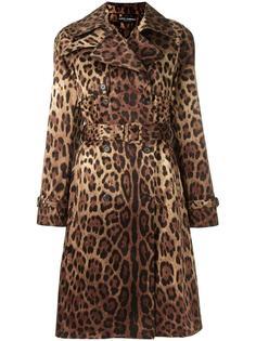 пальто с леопардовым принтом   Dolce & Gabbana