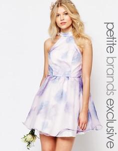 Короткое платье для выпускного из органзы с принтом Chi-Chi London Petite - Мульти