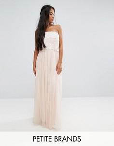 Тюлевое платье макси с цветочной аппликацией Little Mistress Petite - Кремовый