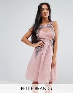 Шифоновое короткое приталенное платье с отделкой Little Mistress Petite - Розовый