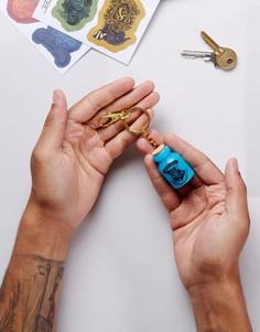 Брелок для ключей с подсветкой в форме флакона с ядом Harry Potter - Мульти Paladone