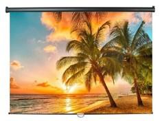 Экран ScreenMedia SPM-1102 White