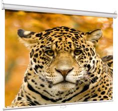 Экран Lumien Eco Picture LEP-100105 160x160cm Matte White