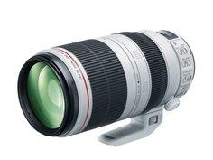 Объектив Canon EF 100-400 mm F/4.5-5.6 L IS II USM
