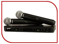 Радиомикрофон SHURE BLX288E/PG58