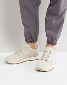 Бежевые кожаные кроссовки с резиновой подошвой Reebok Classic BS7893 - Бежевый