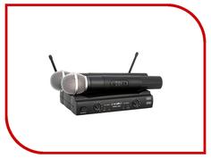Радиомикрофон ProAudio DWS-204HT