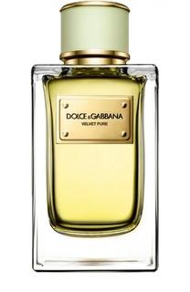 Парфюмерная вода Velvet Collection Pure Dolce & Gabbana