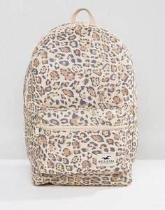 Парусиновый рюкзак Hollister Core - Коричневый