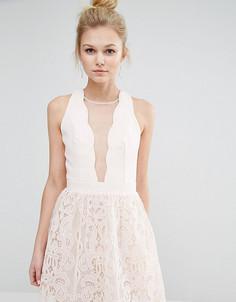 Короткое приталенное платье с сетчатой вставкой и кружевом Little Mistress Petite - Розовый