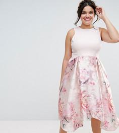 Платье миди с фигурным вырезом и цветочным принтом на юбке Coast Plus Orsay - Розовый