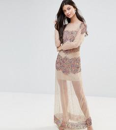 Декорированное платье макси из сетки Maya Petite - Мульти