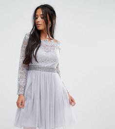 Короткое приталенное платье для выпускного с кружевным топом и открытыми плечами Little Mistress Petite - Серый